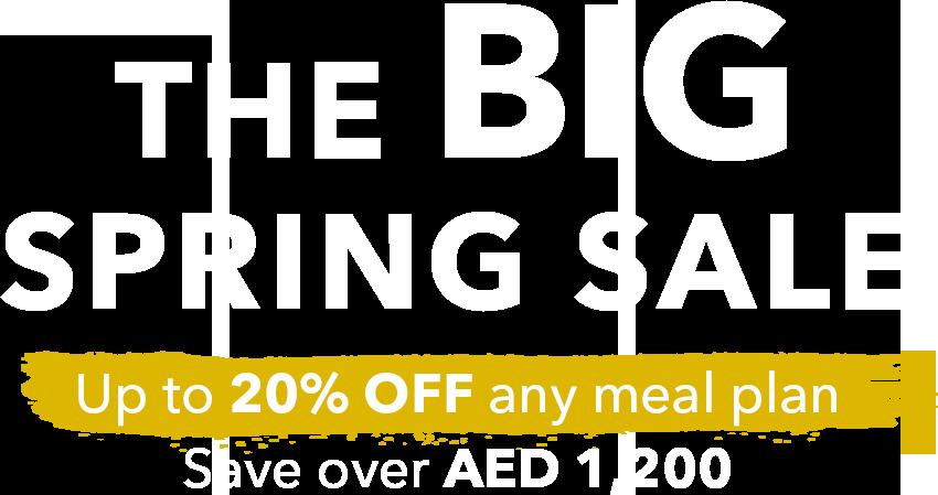 The Big Spring Sale