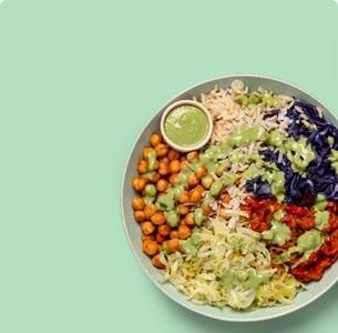 Vegetarian<br> Plan